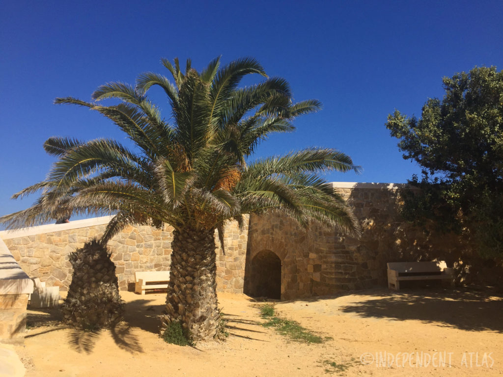 palm tree and blue skies with fort on the island of tabarca